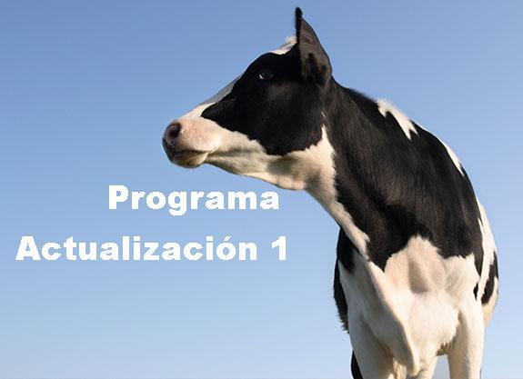 Programa de Actualización 1
